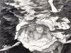 MIDNIGHT SWIM, (after Cezanne)